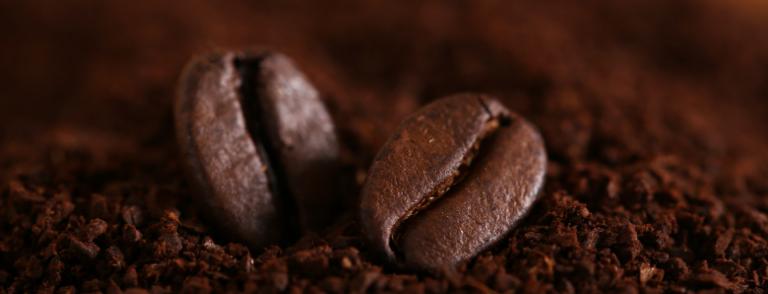 Anatomía del Café puro