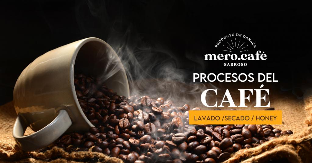 Procesos del Café molido