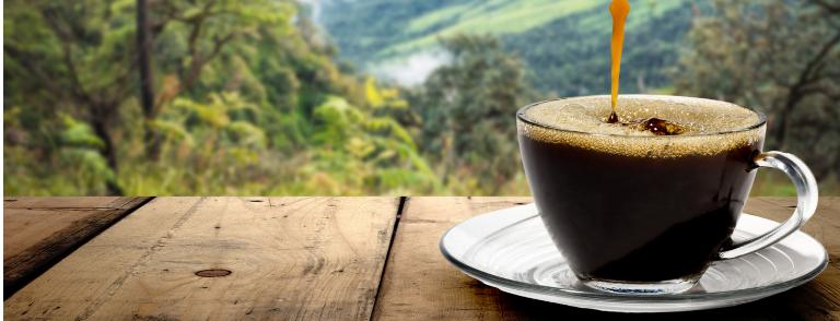 historia del café en Brasil