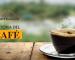 historia del café en Mexico