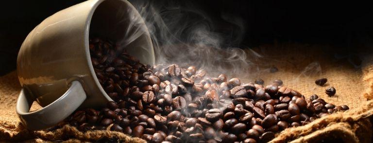 café en grano al mayor